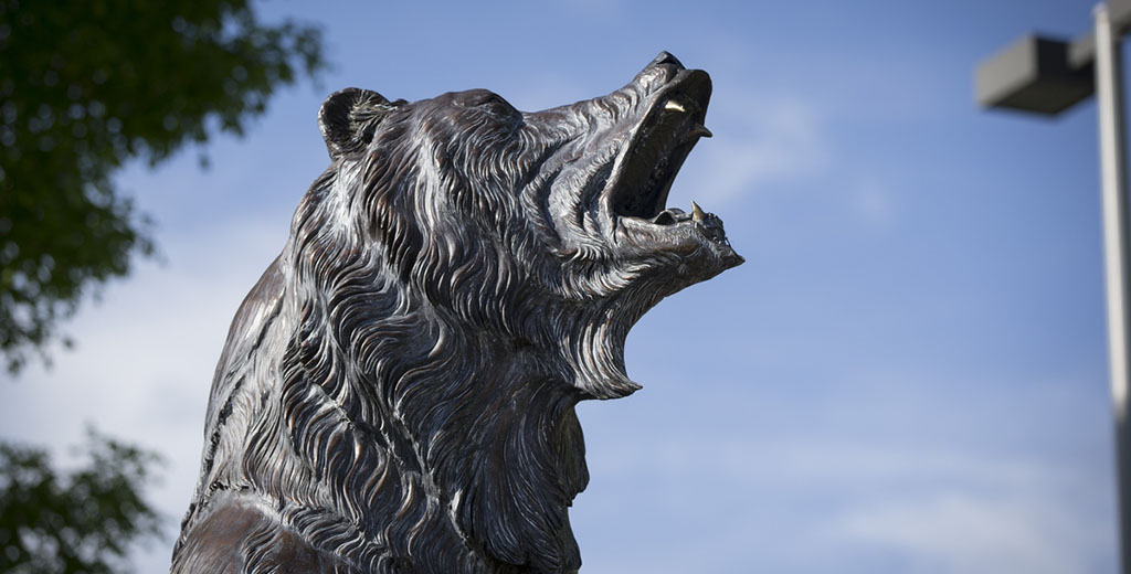 A close-up view of the head of the Grizzly statue on campus